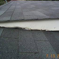 Roof_DCP01129