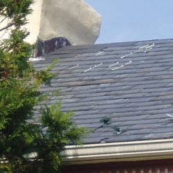 Roof_PA210001