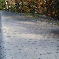 Roof_PB200004