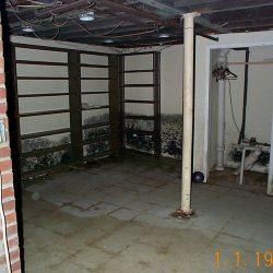 mold_basement_2