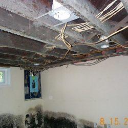 mold_basement_5