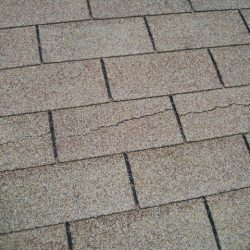 Roof_P9280014