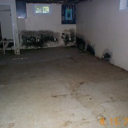 mold_basement_4